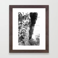 Planters Framed Art Print