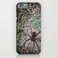 Creepy Spider iPhone 6 Slim Case