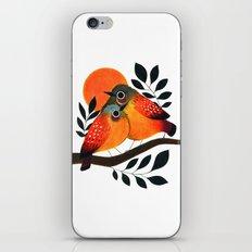 Fluffy Birds iPhone & iPod Skin