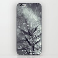 dewy burst iPhone & iPod Skin