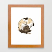 Sleeping Dog #002 Framed Art Print