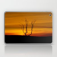 Lone tree sunset Laptop & iPad Skin