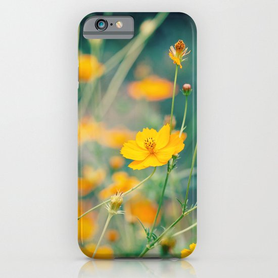 Orange Cosmos iPhone & iPod Case