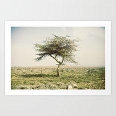 twist::kenya Art Print