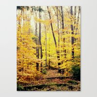 The Glow Canvas Print