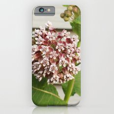 Milkweed iPhone 6s Slim Case