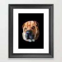 Shar Pei Framed Art Print