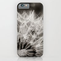 iPhone & iPod Case featuring Dandy by Kali Laine Photography