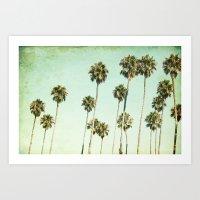Palm Trees (California D… Art Print