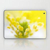 WHITE ANEMONE Laptop & iPad Skin