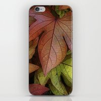 leaves at rest iPhone & iPod Skin