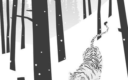 Art Print - White tiger - Roland Banrevi