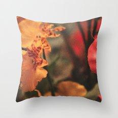 Vintage Love 2 Throw Pillow