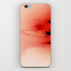 Winter Spring iPhone & iPod Skin