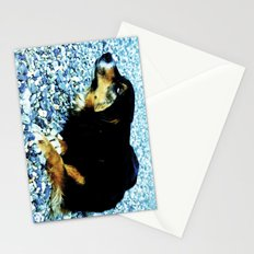 In the south with this beautiful dog. Stationery Cards
