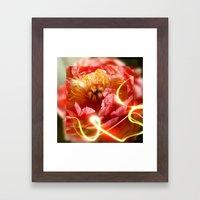 Enchanting Peony Framed Art Print