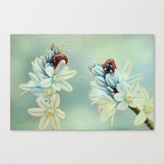 Ladybirds Canvas Print