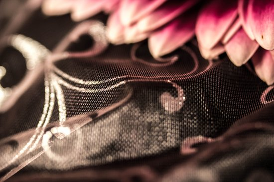 Delicate Lace Canvas Print