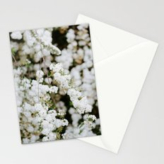 Bridal Veil Stationery Cards