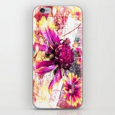 Elusive iPhone & iPod Skin