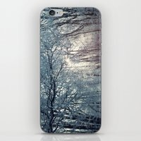 Winter (2) iPhone & iPod Skin