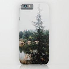 Franklin Canyon Reservoir, CA iPhone 6 Slim Case