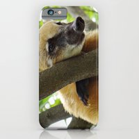 iPhone & iPod Case featuring Coati by Celso Azevedo