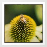 bee ball Art Print
