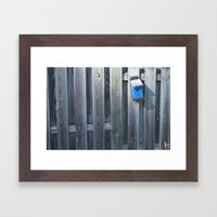 Lost Birds Framed Art Print