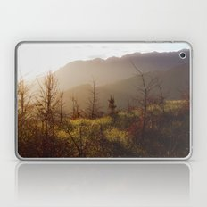 Wilding Pine Laptop & iPad Skin