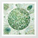 A garden Art Print