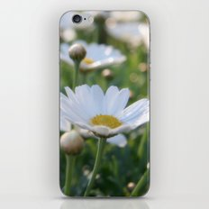 Fresh morning 0797 iPhone & iPod Skin