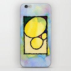 Pedras iPhone & iPod Skin
