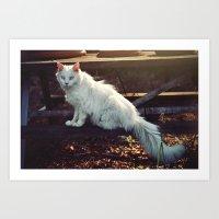 Ghost Cat Art Print