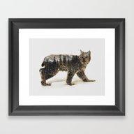 Arctic Lynx Framed Art Print