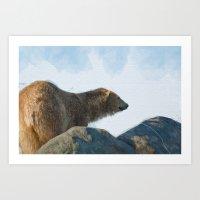 Polar                   … Art Print