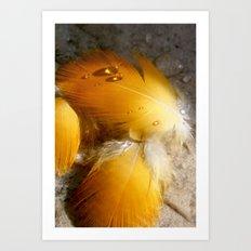 Yellow Feathers Art Print