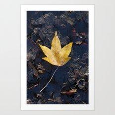 Yellow fallen leaf Art Print