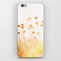 Summer Dry iPhone & iPod Skin