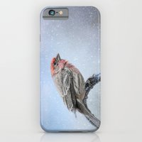Finch In The Snow iPhone 6 Slim Case