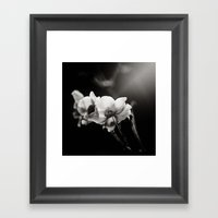 Anemonish Framed Art Print
