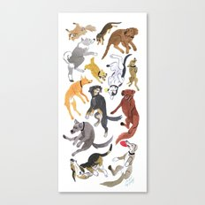 Dogs! Canvas Print