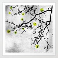 Wintertree Abstract Art Print