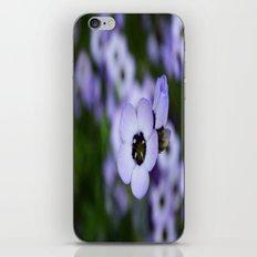 Soft Beauty iPhone & iPod Skin