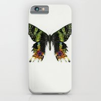 iPhone Cases featuring Colorful Madagascan Sunset Moth  by Cindy Lou Bailey