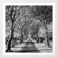 Cemetery path. Art Print