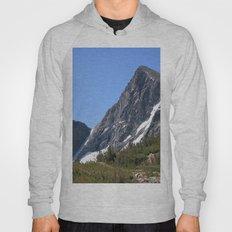 Mount Dana Hoody