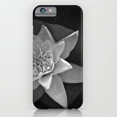 Nature star iPhone 6 Slim Case