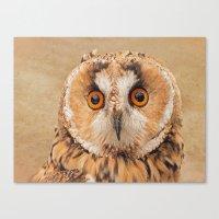 OWLIFY Canvas Print