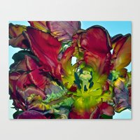 Still Life With Red Tuli… Canvas Print
